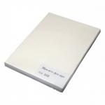 Фотобумага HOSt Матовая одностороняя A4 200 г/м2 100 листов
